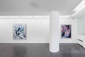 Installation view of Trespasses from the exhibition Into the Hideous Hidden at Cecilia Hillström Gallery